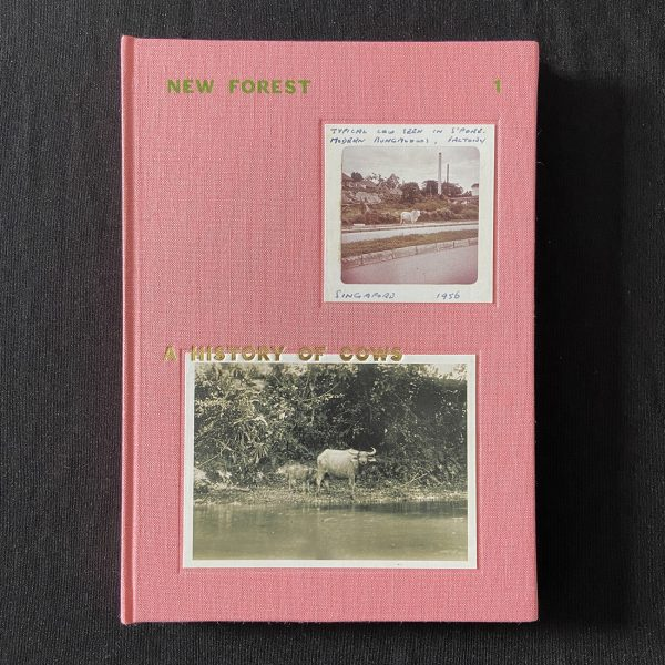 NEW FOREST 1: A HISTORY OF COWS